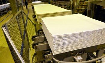 Las principales empresas productoras de celulosa en Brasil se afirman ante calificadoras de riesgo<br>