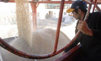 Ajustan los preparativos de logística para comenzar la entrega de raciones a los ganaderos