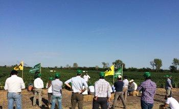 Se visitaron ensayos de soja y de maíz vinculados al Centro de Entrenamiento.