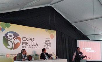 <b>Alberto González, Ricardo Reilly y Alejandro Zambrano </b>