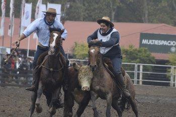 Las pruebas, en el ruedo de la Rural del Prado, se realizarán de viernes a domingo.<br>