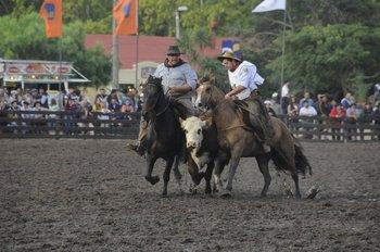Los criollistas locales y de la región disfrutaron de cuatro días de actividades en la Rural del Prado.<br>