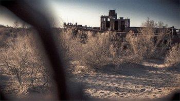 Herbicidas y pesticidas de los cultivos de algodón de Uzbekistán quedaron expuestos.