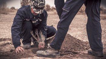 La siembra de sauxales en el lecho del mar de Aral es un proceso largo y lento.