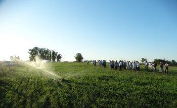Sistema de riego de festuca bajo la mirada de un grupo de productores