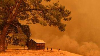 Algunas partes de California sufrieron incendios forestales en julio, debido al calor extremo.