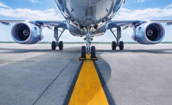 Podrían utilizarse en el futuro proteínas anticongelantes sintéticas para diseñar alas de aviones libres de hielo.