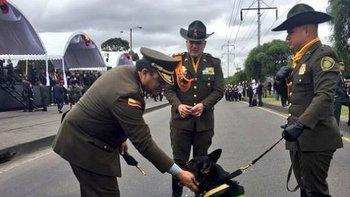 Sombra ha participado en más de 300 operativos con la policía antinarcóticos.