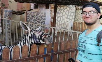 El zoológico niega que se trate de un burro pintado.