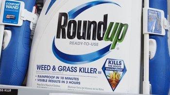 Roundup es un producto desarrollado por Monsanto, compañía que pertenece a Bayer.