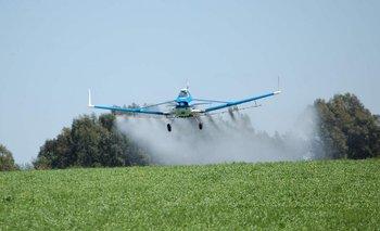 Monsanto debe indemnizar con 289 millones de dólares a un jardinero estadounidense enfermo de un cáncer terminal.