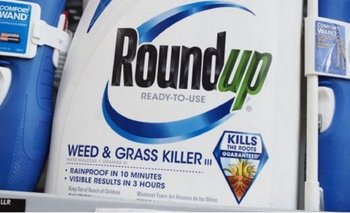 <b>Roundup es un producto desarrollado por Monsanto, compañía que pertenece a Bayer</b>