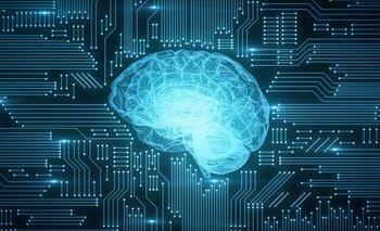 Desde los inicios de la vida tenemos la constante oportunidad de influir en nuestro propio cerebro.