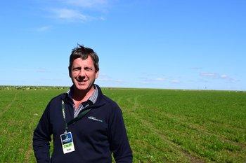 Juan Díaz, gerente de Investigación y Desarrollo de PGGWrightson Seeds.
