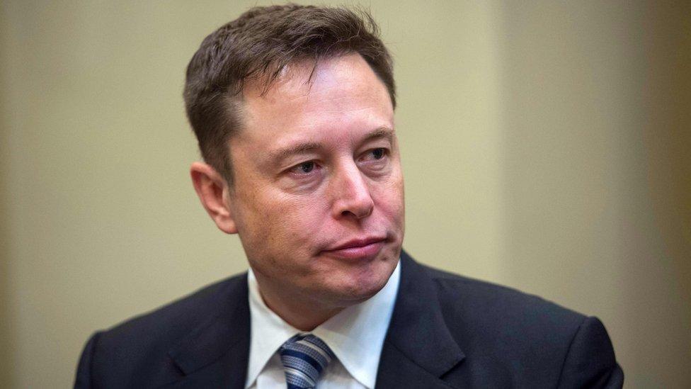 Tesla nombra nueva directora en reemplazo de Elon Musk