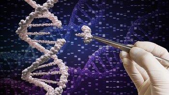 Algunos temen a la manipulación genética, otros creen que podría ser nuestra salvación.