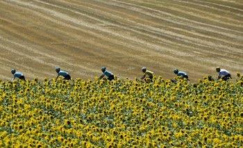 Tras la 14ª etapa, Froome recuperó la malla amarilla<br>