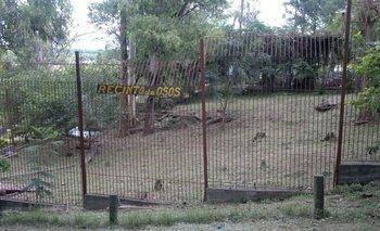 Así se ve el espacio que ocupa ahora la osa Eva en el zoológico de Salto
