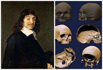 René Descartes y las imágenes de los nuevos estudios sobre su cráneo