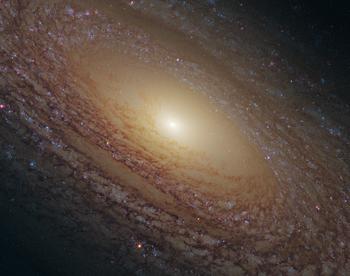 Disco de estrellas de la galaxia espiral NGC 2841, en la constelación septentrional de la Osa Mayor
