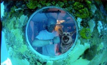 Cousteau desde la ventana de la base Aquarius, a 19 metros debajo del mar