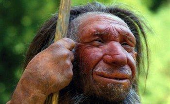 Nuevas pruebas sobre la historia del neandertal.