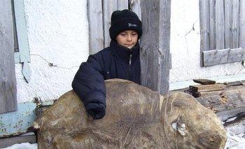 La cría de mamut hembra fue descubierta por un pastor de renos en 2007
