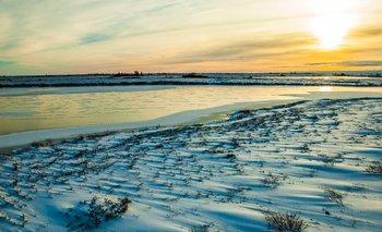 La tundra canadiense es un paisaje vasto y sereno, que queda cubierto de nieve desde fines de otoño hasta principios de al primavera