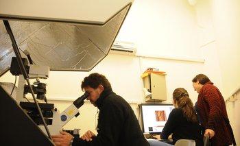 Científicos del Instituto de Investigaciones Biológicas Clemente Estable trabajando con el microscopio de Fuerza Atómica