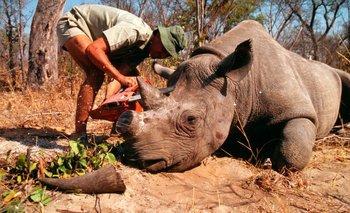Los 40 países reseñados albergan el 32% de todos los mamíferos en extinción del planeta