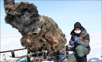 El mamut encontrado en Siberia tiene unos 10.000 años de antigüedad