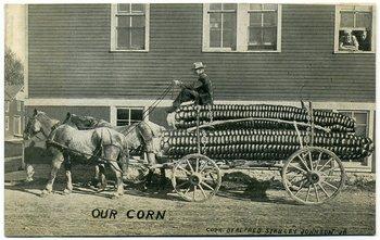 """""""Nuestro maíz"""". Fotomontaje de un choclo gigante"""