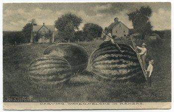 """""""Esculpiendo sandías en Kansas"""", Arkansas City, Kansas, 1907"""